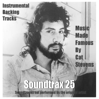 Vol 25 - Music made famous by Cat Stevens - Mp3